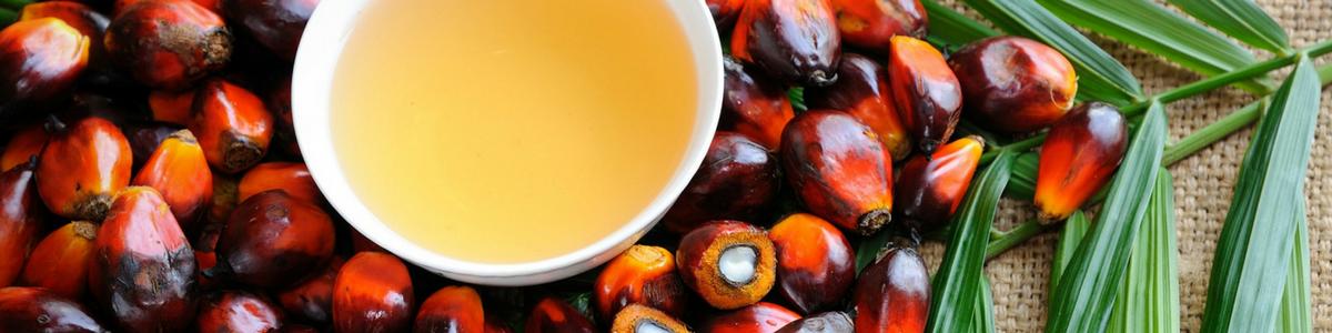 es malo aceite de palma