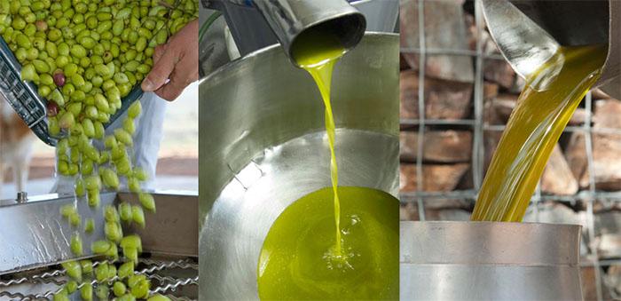 elaboracion-aceite