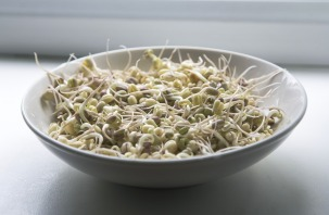 sprouts-1725589_960_720